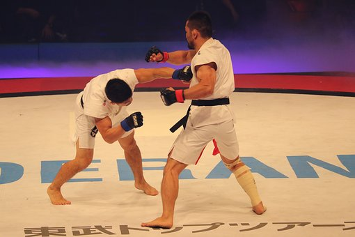 mixed martial arts in Dubai